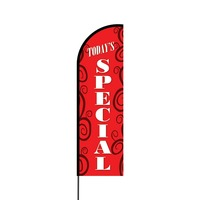 Today's Special Flex Banner Flag - 14 (Single Sided)